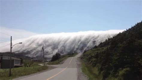 Rolling Fog GIF - Fog Nature Mountains - Discover & Share GIFs